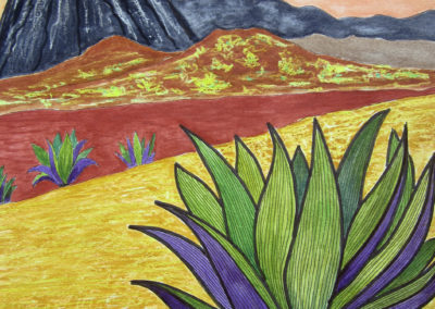 Agaves and Volcano